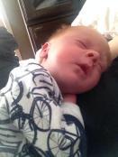 ollie sleeping